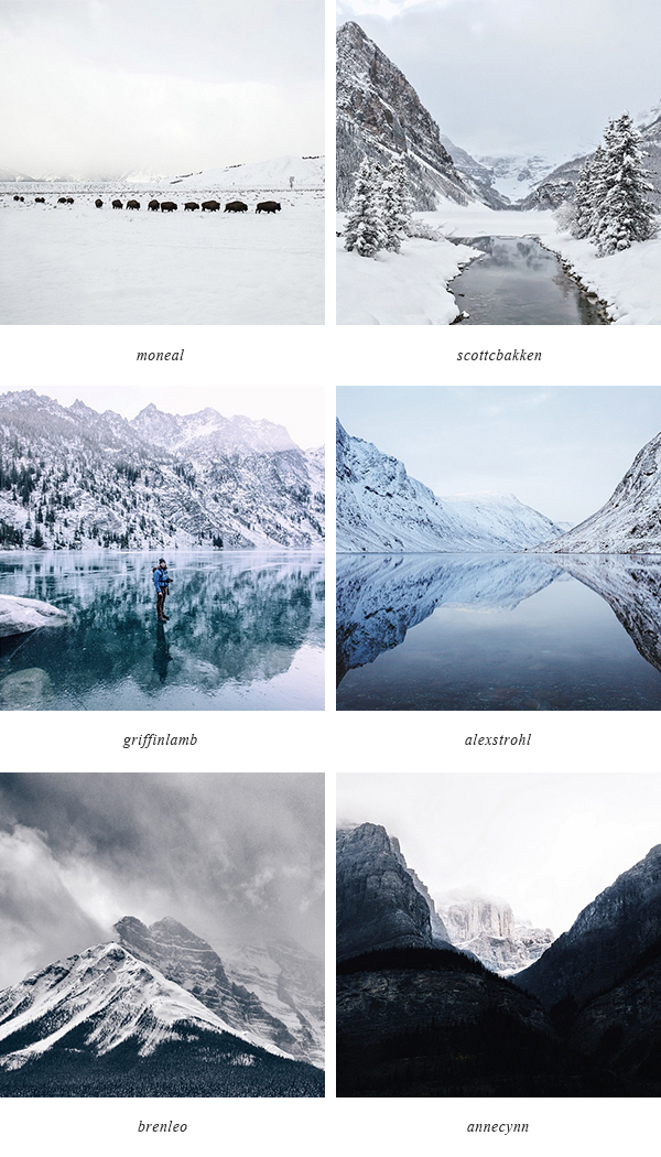 Winter Instagrammers | Of Trees and Hues