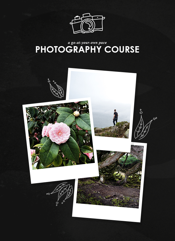Photography Course by Of Trees and Hues for Cocorrina